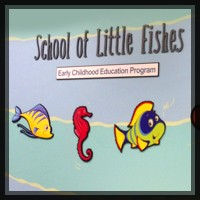 School of Little Fishes